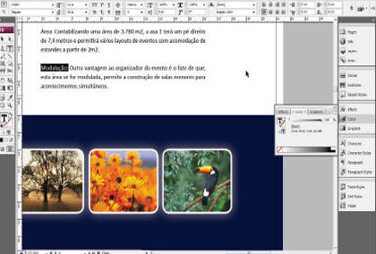 Curso–indesign-cs3-fundamentos-IDSGN-CS3-F-slideshow-5.jpg
