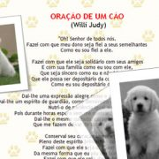 Curso–word-2007-fundamentos-WRD07-F-slideshow-03.jpg