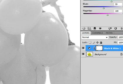 Curso–photoshop-cs4-essencial-para-fotografia-PSHOPCS4-F-ESS-slideshow-04.jpg