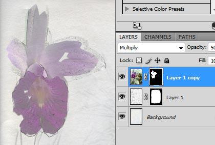 Curso–photoshop-cs4-essencial-para-fotografia-PSHOPCS4-F-ESS-slideshow-08.jpg