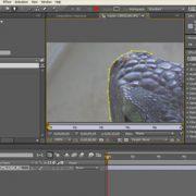 Curso–after-effects-cs4-fundamentos-AFTER-CS4-F-slideshow-02.jpg