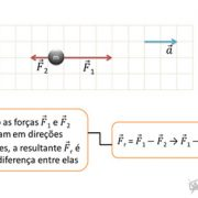 -fisica-fundamental-vetores-e-leis-de-newton-FIS-F-VLN-slideshow-06.jpg