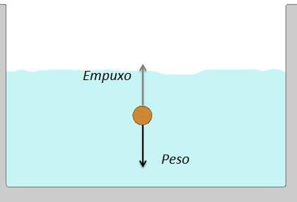 Curso-slideshow-fisica-fundamental-dinamica-hidrostatica-e-gravitacao–06.jpg