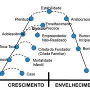 Curso-ONLINE-entendendo-as-organizacoes-empresariais–04.jpg