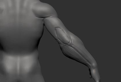 Curso-ONLINE-personagens-3d-para-games-anatomia–02.jpg