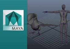 Maya 2015 Rigging Essencial